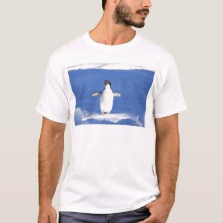 Penguin-561