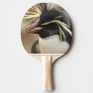 penguin-86.jpg pala de tenis de mesa