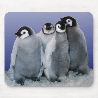 Penguin Babies Mouse Pad