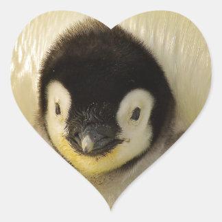 Penguin baby heart sticker