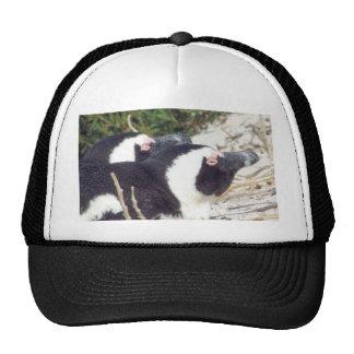 Penguin Baseball Cap Mesh Hats
