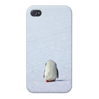 penguin belly iPhone 4 case