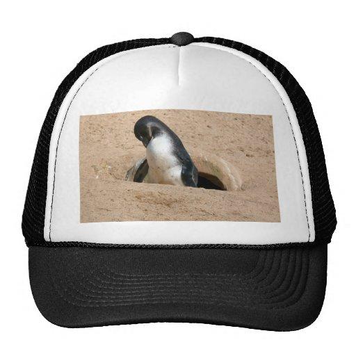 Penguin Bird Animal Trucker Hat