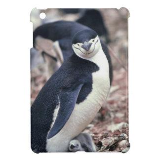 Penguin Bird Cute Animal Black White Water iPad Mini Case