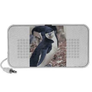 Penguin Bird Cute Animal Black White Water Travelling Speaker