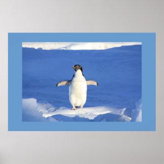 Penguin Bird Feathers Animal Peace Love Destiny Poster