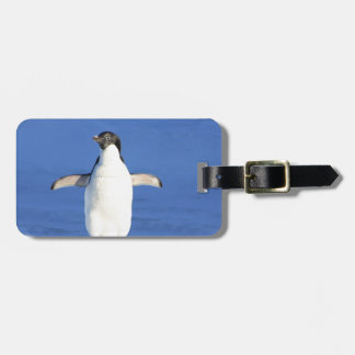 Penguin Bird Feathers Black White Personalize Name Travel Bag Tags