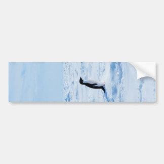 penguin bumper stickers