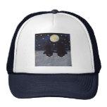 Penguin By Moon Light Hats