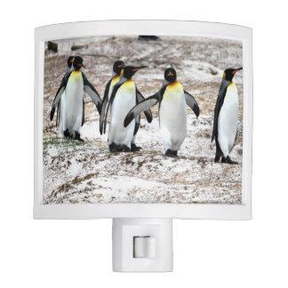 Penguin Chorus Line Night Light