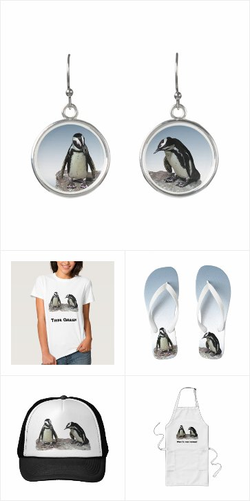 Penguin Clothing and Accessories