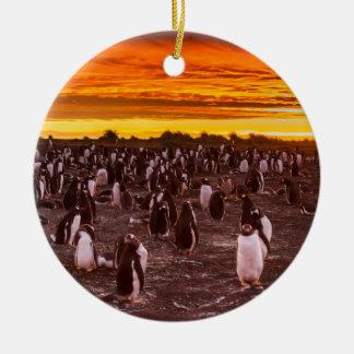 Penguin colony at sunset, Falkland Ceramic Ornament