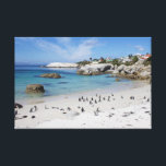 """Penguin Colony on Boulders Beach Canvas Print<br><div class=""""desc"""">Photograph shows the famous African penguin colony on Boulders Beach in Simon&#39;s Town near Cape Town in South Africa.</div>"""