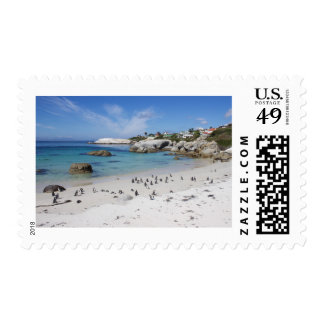 Penguin Colony on Boulders Beach, South Africa Postage