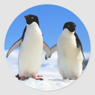 Penguin Couple Classic Round Sticker