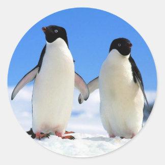 Penguin Couple Stickers