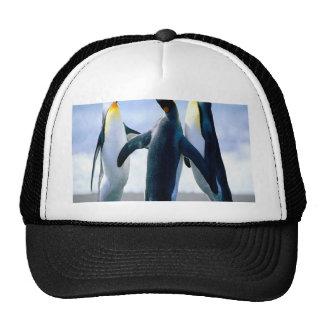 Penguin Dance Trucker Hat