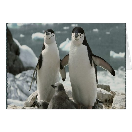 Penguin Family Card