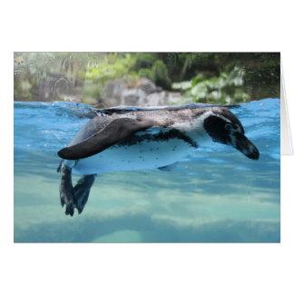 Penguin Float Card