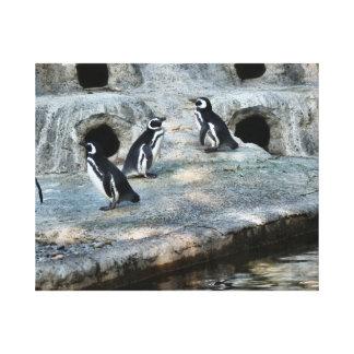 Penguin Flock Canvas Print