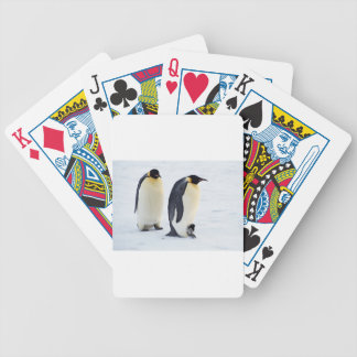 Penguin frozen ice snow bird weather cute animals bicycle playing cards