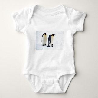 Penguin frozen ice snow bird weather cute animals infant creeper