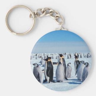 Penguin Gathering Key Chains