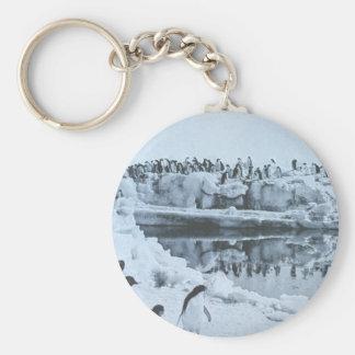 Penguin Herd Basic Round Button Keychain