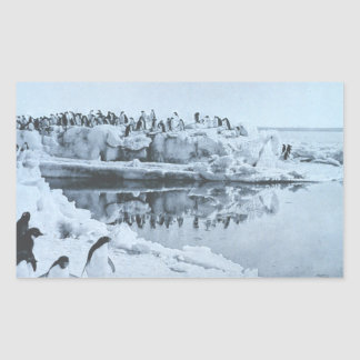 Penguin Herd Rectangular Sticker