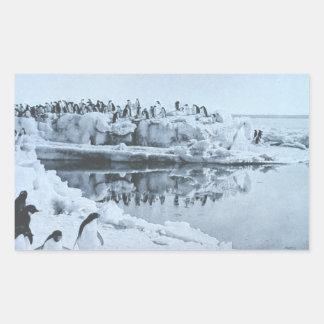 Penguin Herd Rectangular Sticker