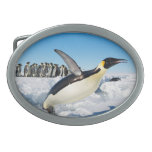 Penguin in Antarctica Jumping Out of the Water Belt Buckle