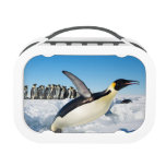 Penguin in Antarctica Jumping Out of the Water Lunchbox