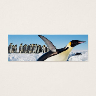 Penguin in Antarctica Jumping Out of the Water Mini Business Card