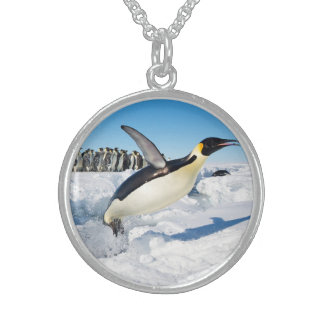 Penguin in Antarctica Jumping Out of the Water Sterling Silver Necklace