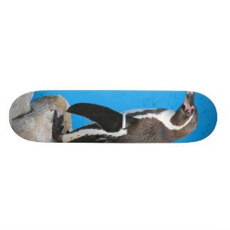 Penguin In Harewood Park Skateboard Deck