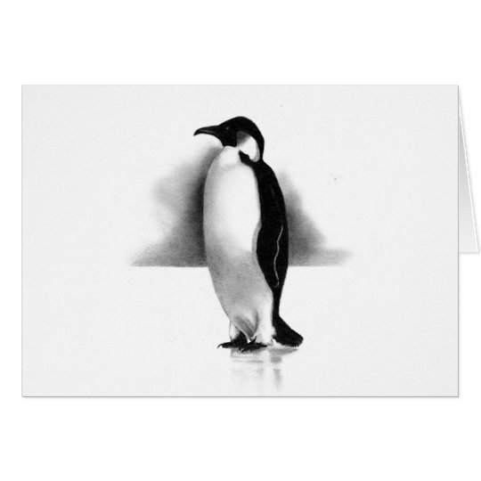 PENGUIN IN PENCIL: REALISM ART CARD