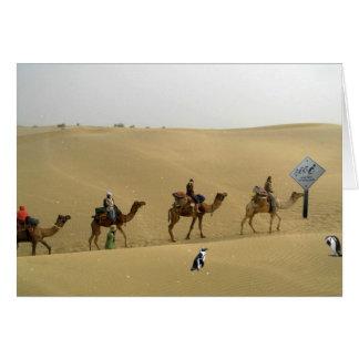Penguin in the Desert Card