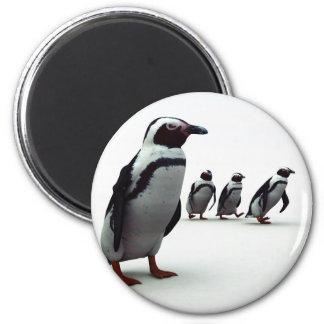 Penguin Line-up Magnet