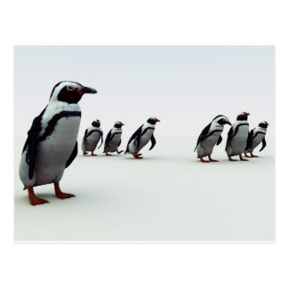 Penguin Line-up Postcard