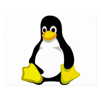 Penguin Linux Tux Postcard