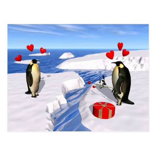 Penguin Lovers Postcard