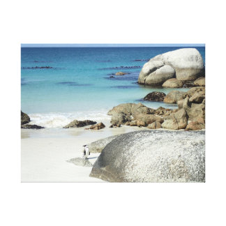 Penguin on Beach, South Africa Canvas Print