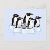 Penguin Party 4.25