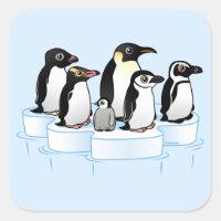 Penguin Party Square Sticker
