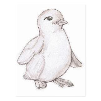 Penguin Postcard