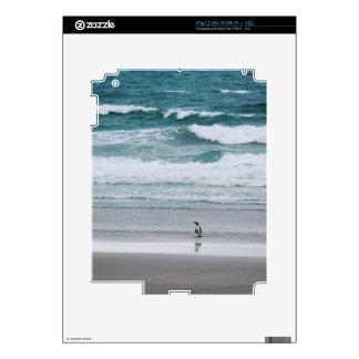 Penguin returning from the ocean iPad 2 skin