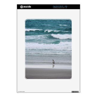 Penguin returning from the ocean iPad skins