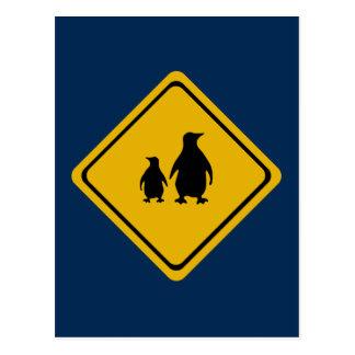 penguin road sign postcard