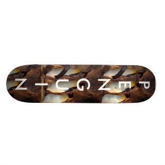 Penguin Skate Board