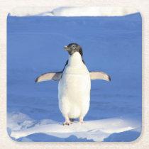 Penguin Square Paper Coaster